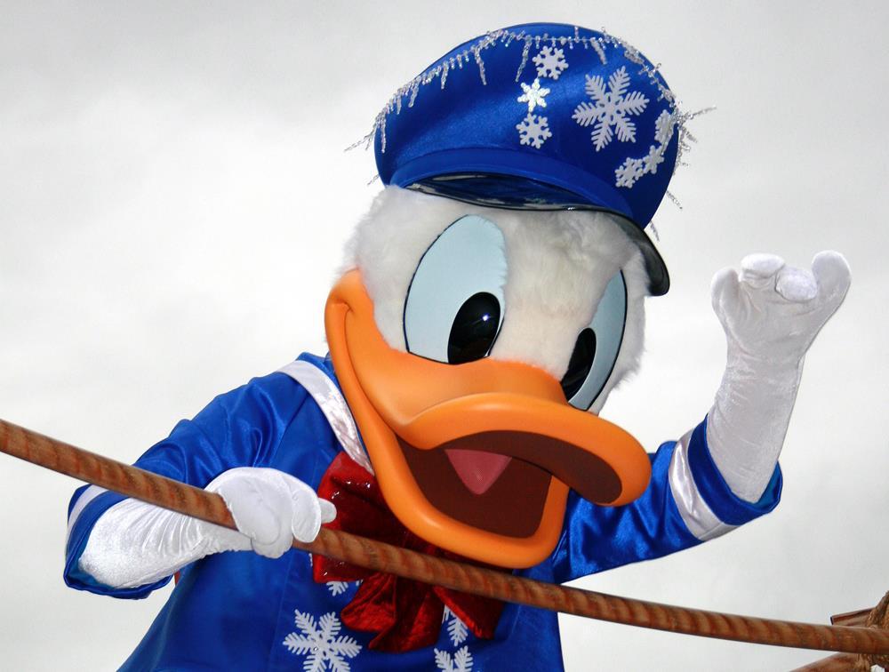 Donald Disney's Animal Kingdom
