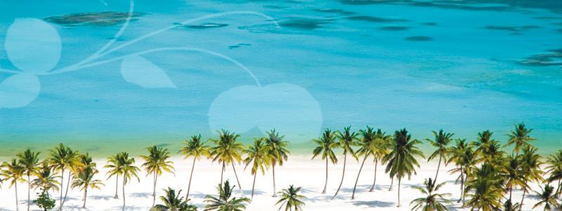 Punta Cana Beach Real Estate Dominican Republic
