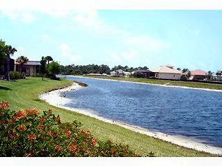Horse Creek Estates Naples Fl homes for sale