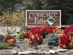 Connestee Falls Homes