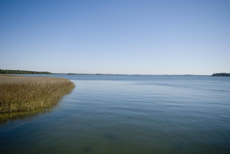 The Wando River at Daniel Island