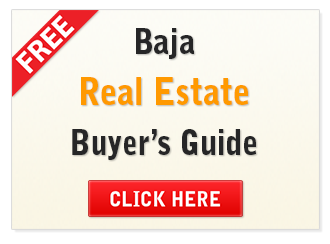 Free Baja Buyer's Guide