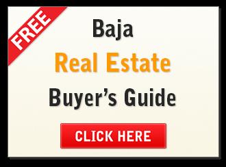 Free Baja Buyer's Guide