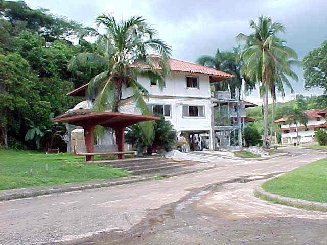 Albrook House