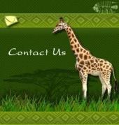 Contact Sam Associates