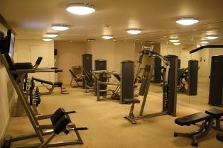 Solstice condominium exercise equipment