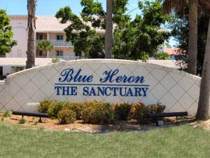 Blue Heron Naples Florida