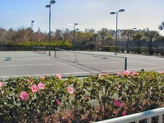 Cypress Woods Naples Fl tennis courts