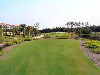 Tiburon Naples Fl championship golf course