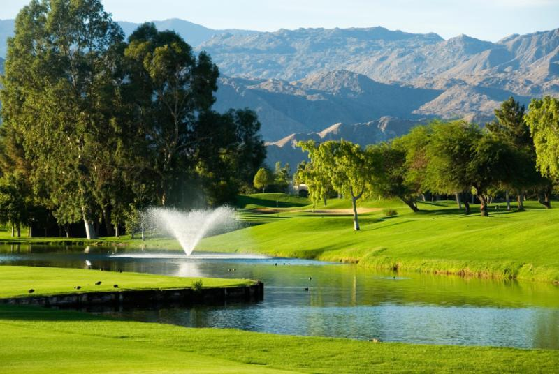 Palm Springs Remax Agent