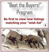 "Be first to view new listings matching your ""wish list""!"