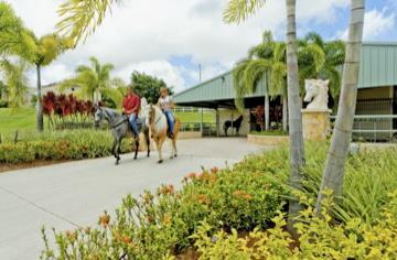 <img src=&quot;equestrian _fcksavedurl=&quot;equestrian center.jpg&quot; alt=&quot;Palmas del mar Equestrian center&quot;>