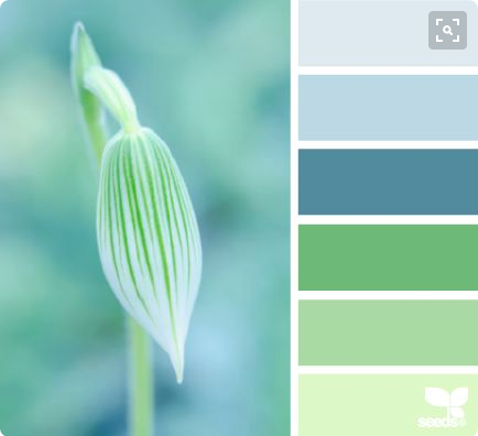 Color Schemes for Real Estate Websites 2