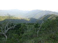 Puerto Rican Mountains