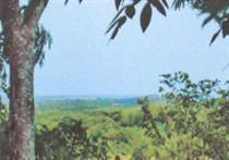 Farms and Acreages for Sale in Caña Fistula, Santa Cruz, Guanacaste $449,000