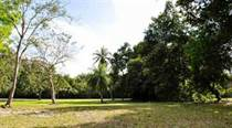 Lots and Land for Sale in Dorado Beach Estates, Dorado, Puerto Rico $2,100,000