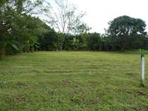 Lots and Land for Sale in Los Angeles , Atenas, Alajuela $50,000