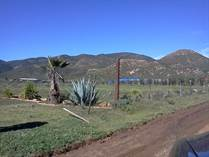 Lots and Land for Sale in Adobe Guadalupe Area, Ensenada, Baja California $450,000