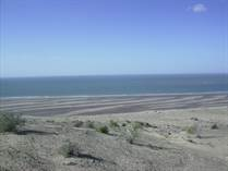 Lots and Land for Sale in El Golfo de Santa Clara, Sonora $2,380,500