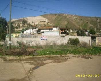 Generacion 2000 Rodriguez