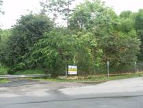 Lots and Land for Sale in Bairoa, Caguas, Puerto Rico $2,500,000
