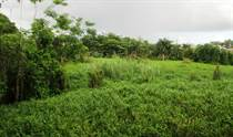 Farms and Acreages for Sale in Buena Vista, [Not Specified], Puerto Rico $950,000