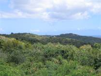Lots and Land for Sale in Puerto Real, Vieques, Puerto Rico $85,000