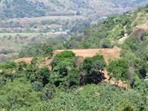 Lots and Land for Sale in Punta Leona, Garabito, Puntarenas $400,000