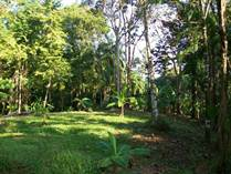 Lots and Land for Sale in Drake Bay, Puntarenas $760,000