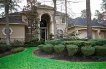 Homes Sold in Lyric Arbor, The Woodlands, Texas $714,500