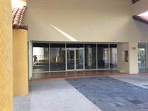Commercial Real Estate for Rent/Lease in Downtown Central, san jose del cabo, Baja California Sur $11,250 monthly