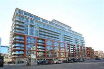 Condos for Rent/Lease in University/Adelaide, TORONTO, Ontario $1,600 monthly