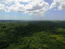 Farms and Acreages for Sale in Playa Lagarto, Guanacaste $600,000