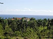 Lots and Land for Sale in Cabrera, La Catlina Cabrera, Maria Trinidad Sanchez $15