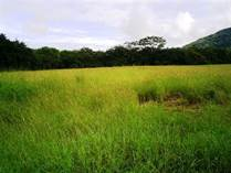 Farms and Acreages for Sale in Corralillo , Nicoya, Northern Pacific $60,000