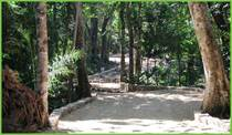 Lots and Land for Sale in Tulum, Riviera Maya, Quintana Roo $100,000