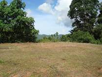 Lots and Land for Sale in Platanillo, Dominical, Puntarenas $79,000
