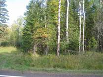 Lots and Land for Sale in Duluth, Minnesota $47,300