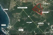 Lots and Land for Sale in La Noria, Sinaloa $15,800,000