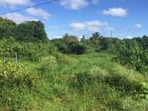 Lots and Land for Sale in Corrales, Aguadilla, Puerto Rico $22,000