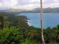 Lots and Land for Sale in Samana, Samaná $10,500,000