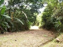 Lots and Land for Sale in Uvita, Puntarenas $125,000