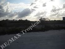 Lots and Land for Sale in Arena Gorda, Punta Cana, La Altagracia $1,131,000