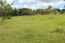 Lots and Land for Sale in Puntas Ward, Rincon, Puerto Rico $93,000