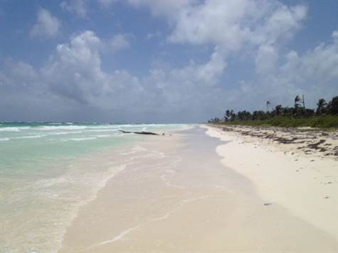 Mahaual Beach Lot Mahahual Quintana Roo For Sale By Jason Waller Playa Real Estate Group Broker