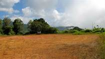 Lots and Land for Sale in Dominicalito, Puntarenas $299,000
