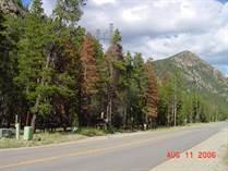 Homes Sold in North Fork, KEYSTONE, Colorado $280,000