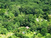 Homes for Sale in Uvita, Puntarenas $300,000