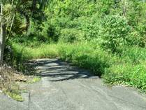 Farms and Acreages for Sale in Barrio Bayaney, Hatillo, Puerto Rico $140,000