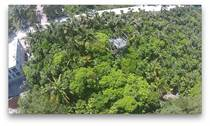 Lots and Land for Sale in Tankah Tres, Quintana Roo $130,000